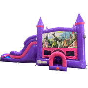Shrek Dream Double Lane Wet/Dry Slide with Bounce House