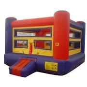 A Boxing ring(no gloves)