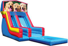 Dogs Water Slide
