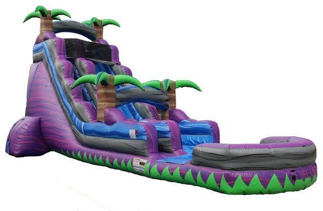 24' Screaming Purple Crush Water Slide