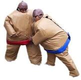 Valley Party Rentals Sumo Suits For Rent