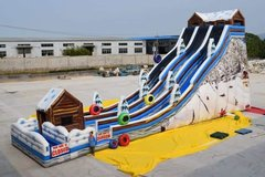 40 Foot tall Duel Lane Alpine Tubing Slide