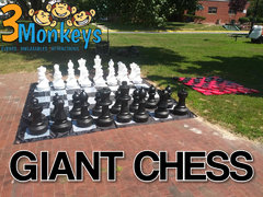 Oversized Chess #541