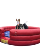 Mechanical Bull (#59)