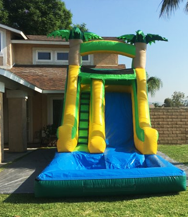 Tropical Water Slide for rent