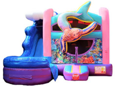 Jump Houses Rentals | Bounce Houses | Jump Houses | Jumper Rentals | Jumpers near me for rent from Party WIth 630