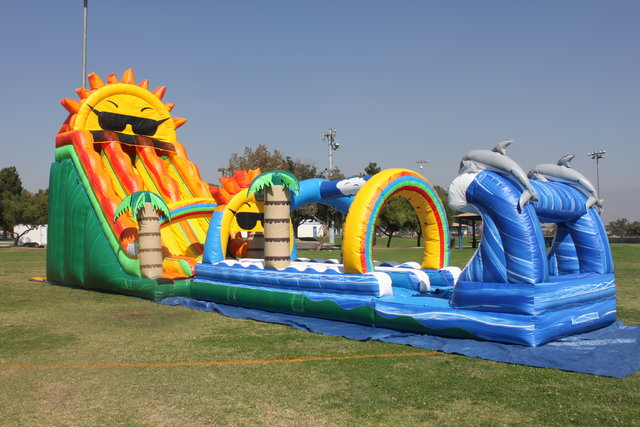 22 ft. paradise sunshine double lane water slide with dolphin sliip and slide