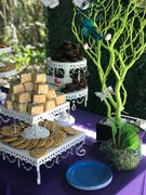 DIY Cake, Dessert and Candy Table Rentals