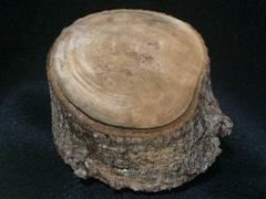 Medium Rustic Wood Slices