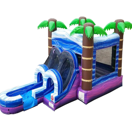 Purple Crush wet dry combo bounce house