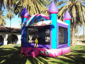 Pink Purple & Blue Princess Castle