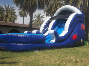Sea Splash Preschool Water Slide