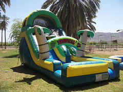 Tropical Wave Water Slide for Teens