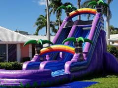 Purple Paradise Slide Rentals
