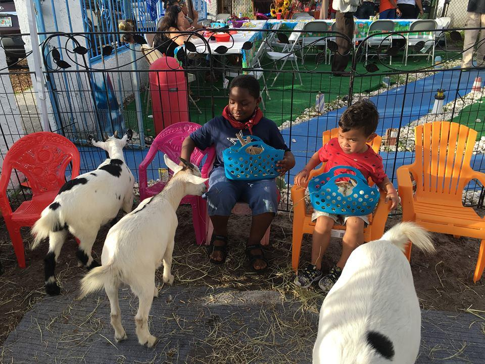 Petting Zoos In West Palm Beach