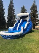 18Ft Dolphin Double Bump Water Slide