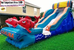 BIG KAHUNA (19ft X 40ft GIANT Water Slide)