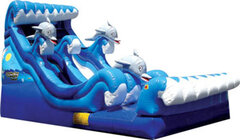 19' Dolphin Bay Water Slide