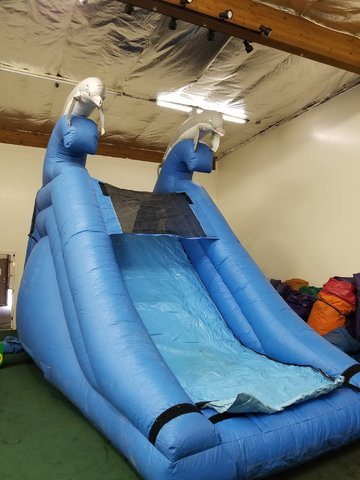Dolphin Splash Water Slide Bounce House & Party Rentals