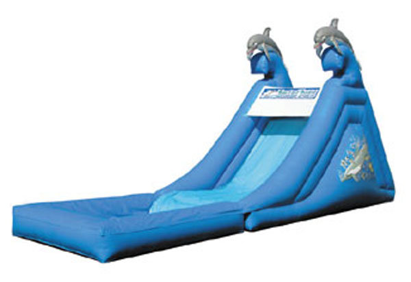 Dolphin Slide with Pool
