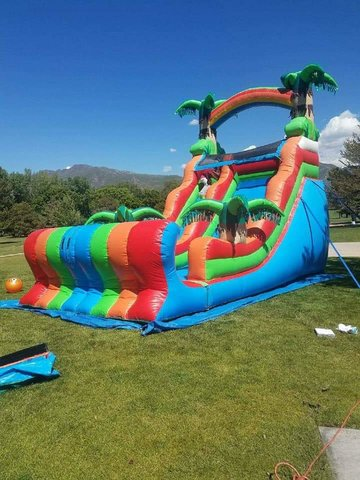 Tropical Slide dry 20FT