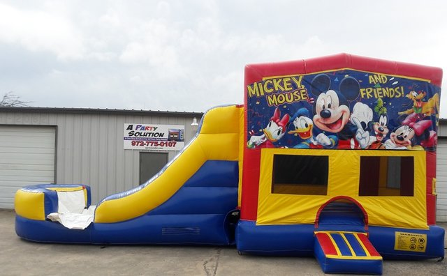Mickey & Friends Panel Red Combo A- Slide w/Goal