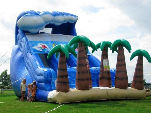 Inflatable Dry Slide Rentals Dothan, Headland, Rehobeth