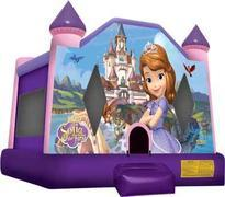 11- Sofia The First Jumpy House