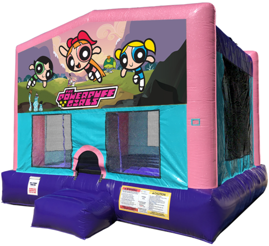 Power Puff Girls Bouncer - Pink Edition