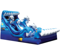 Dolphin Splash Water Slide
