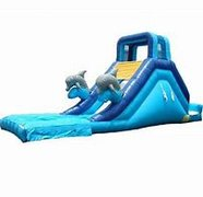 14' Dolphin Waterslide