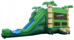 The Palm Tree Combo/ With Attached Slide and Pool