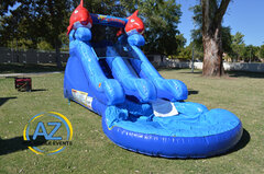 Little Fish Water Slide 12ft tall