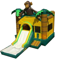 Monkey w/ Slide and BB Hoop and Water Tub