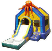 Octopus w/ Slide and BB Hoop and Water Tub
