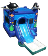 Sea World w/ Slide and BB Hoop and Water Tub