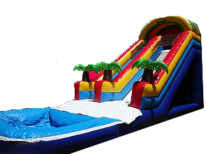 20ft Palm Tree Water Slide