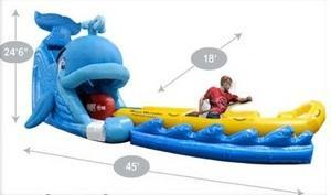 Wally Whale Giant Water Slide