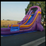 20ft Purple Crush Water Slide