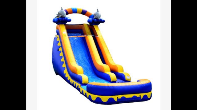 Dolphin 20ft Water Slide with Pool