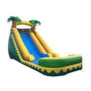 Aloha 20ft Water Slide with Pool