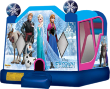 Frozen Water Slide Bounce House