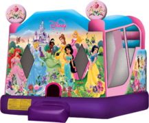 Disney Princess Water Slide Combo