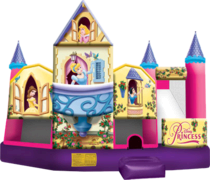 3D Disney Princess Water Slide Combo