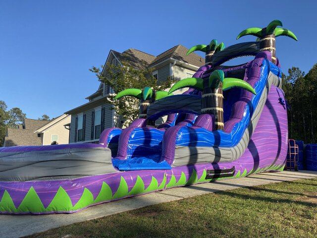 20ft Purple Crush Waterslide