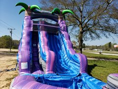 16FT PurpleParadise Water Slide!