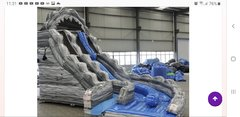 20Ft Wild Rapids Double Lane Curve water Slide!