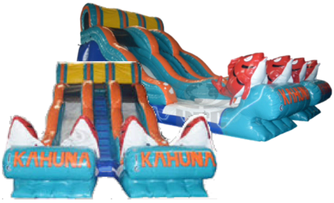 22 Foot Double Lane Big Kahuna   water slide 153