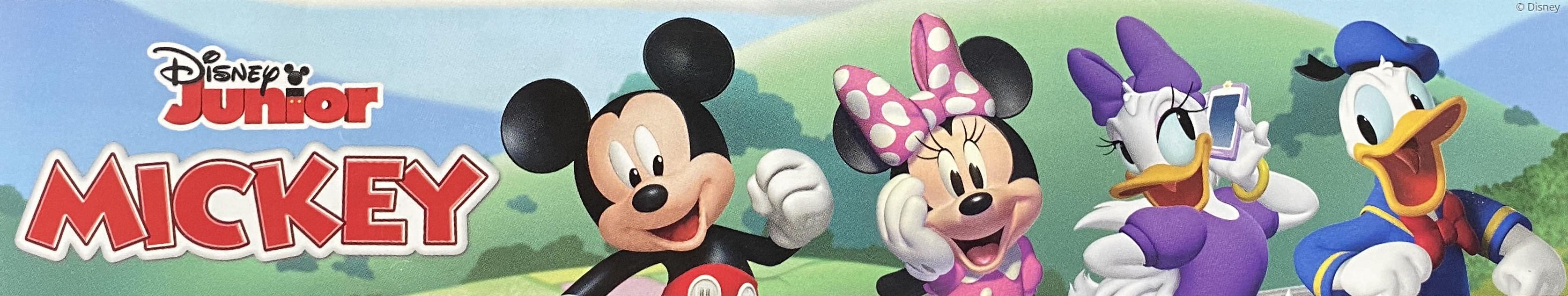 Mickey, Minnie, Daisy and Donald