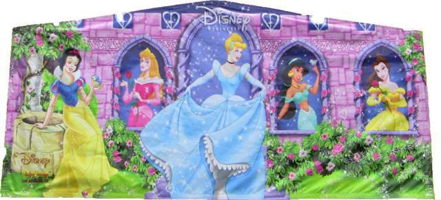 Disney-princess-party-rental-maine-new-hampshire